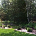 The mossy woodland garden planted