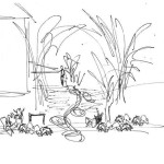 Design sketch from brainstorming session for the amelanchier shade garden