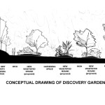 Conceptual drawing illustrating the earthen berms and paths of the Discovery Garden